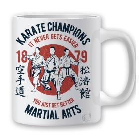Taza Karate Champions